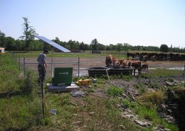 Off-Grid Livestock Watering System