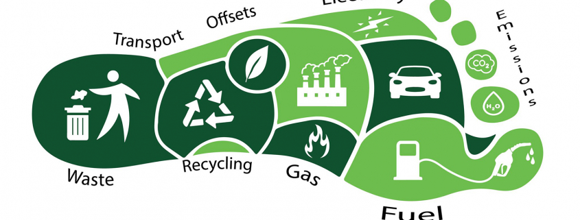 A green foot print depicting different, segmented activities that contribute to carbon emissions